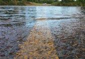 Por qué los caminos inundados son tan peligrosos