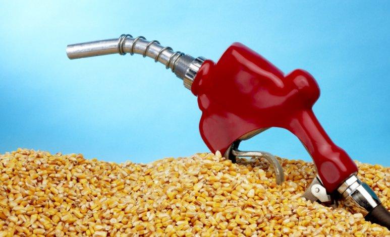 ¿Por qué no debes poner etanol a tu auto en vez de gasolina?