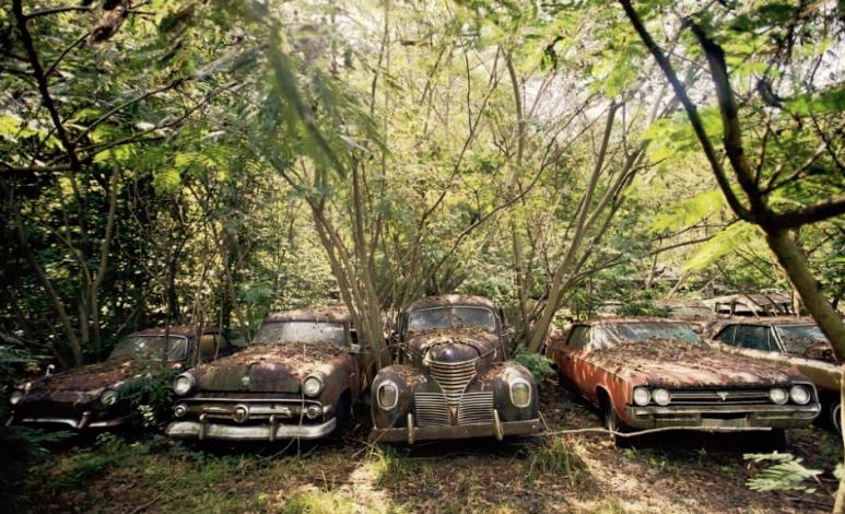 Old Car City, de deshuesadero a paraíso de los fotógrafos